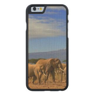 Kilimanjaro And Elephants Carved® Maple iPhone 6 Case