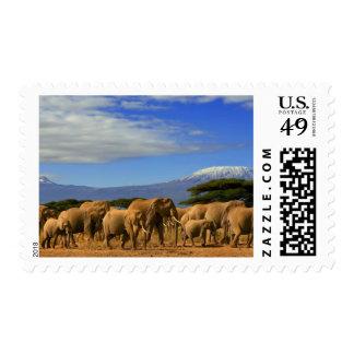 Kilimanjaro And Elephants Stamps
