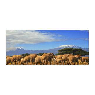 Kilimanjaro y elefantes impresión en lienzo estirada
