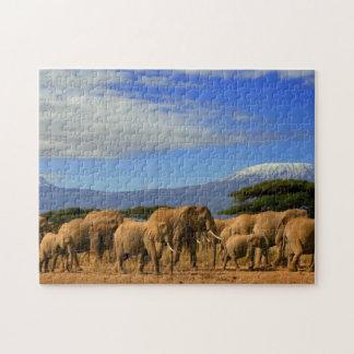 Kilimanjaro y elefantes rompecabezas con fotos