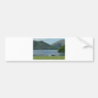 Killarney Lakes and Jarvey Bumper Stickers