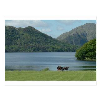 Killarney Lakes and Jarvey Postcard