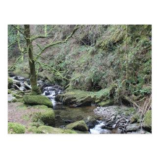 Killarney National Park - Torc Waterfall Postcard
