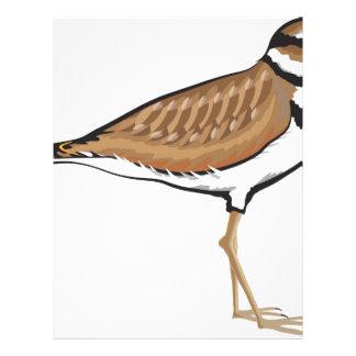 Killdeer bird vector illustration simplified letterhead