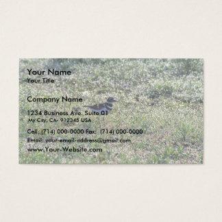 Killdeer Business Card