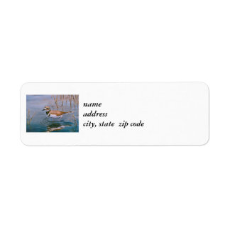 Killdeer Return Address Labels