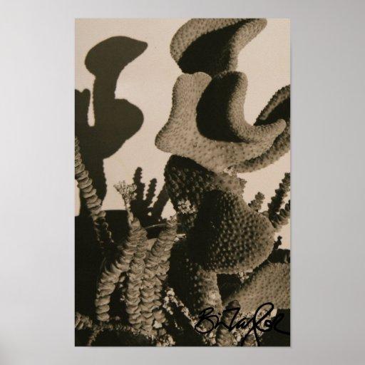 Killer Cacti Poster