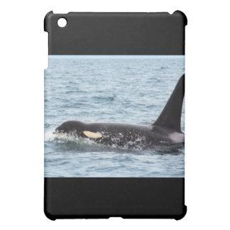 Killer Orca Male Whale San Juan Island iPad Mini Covers