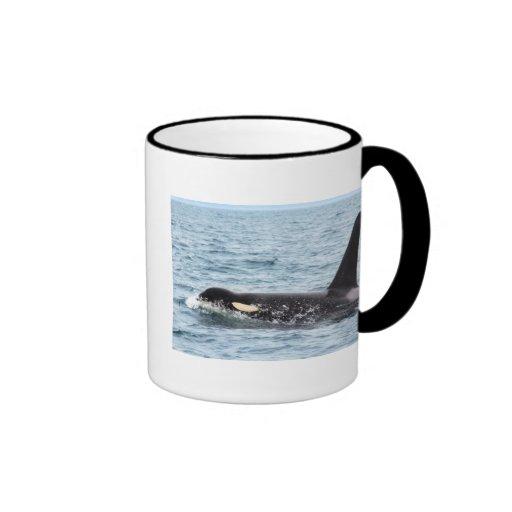 Killer Orca Male Whale San Juan Island Mugs