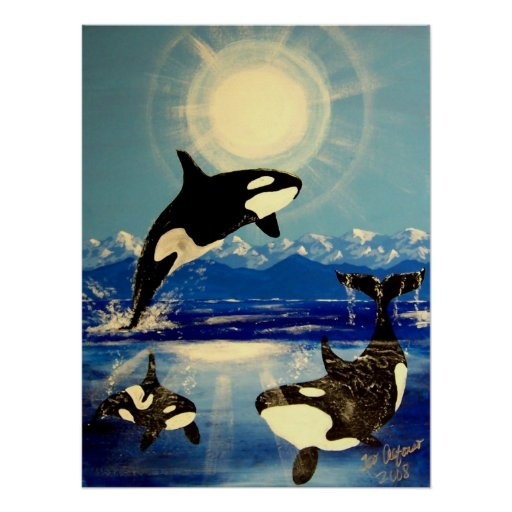 killer orca whale poster