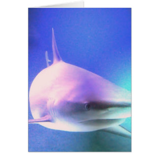Killer Shark Greeting Card