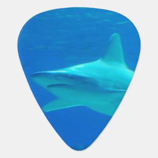Killer Shark Guitar Pick