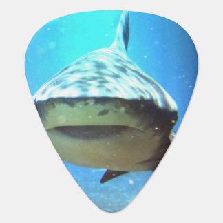 Killer Shark Pick