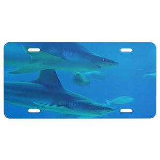 Killer Shark License Plate