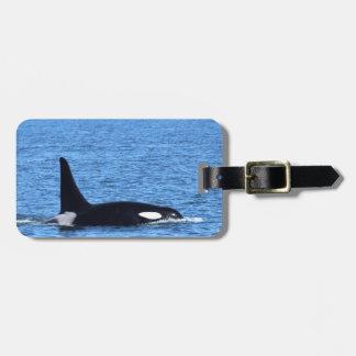Killer Whale Bag Tag