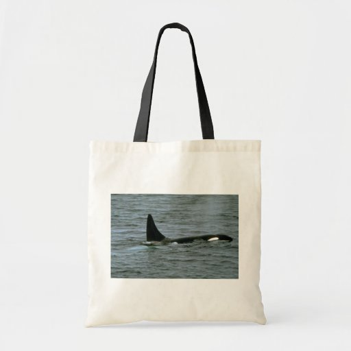 Killer whale budget tote bag