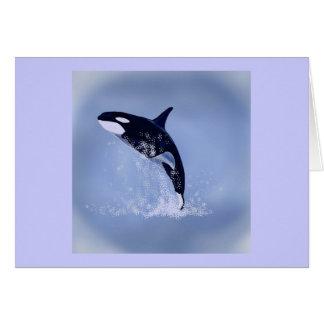Killer Whale Card