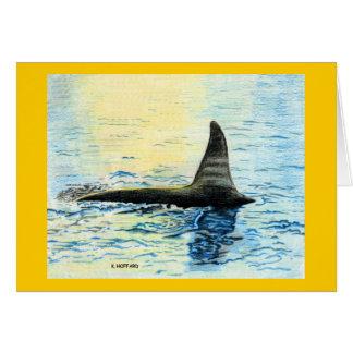 """Killer Whale"" Card"