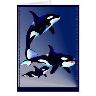 Killer Whale Family Cards
