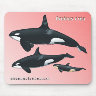 Killer Whale Family Mousepad on Pink Background