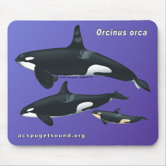 Killer Whale Family Mousepad on Purple Background