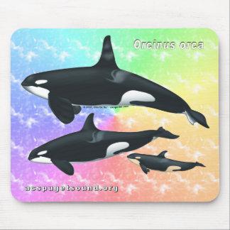 Killer Whale Family Mousepad - Rainbow bkg #2