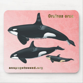 Killer Whale Family Mousepad with Pink Cedar bkg