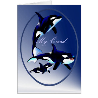 Killer Whale Family Oval  Cards