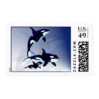 Killer Whale Family-Postage Postage