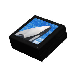 Killer Whale Gift Boxes