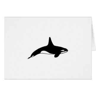 Killer whale in black and white card