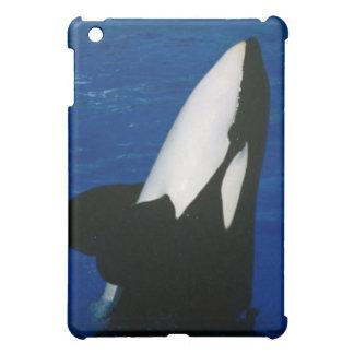 Killer Whale iPad Mini Case