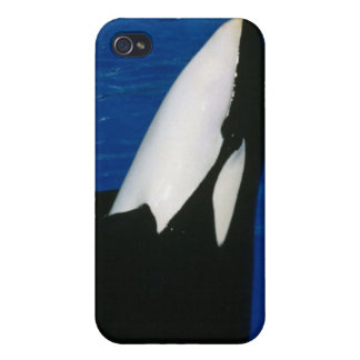 Killer Whale iPhone 4 Case