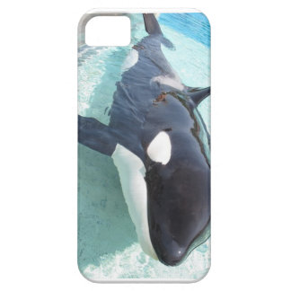 killer whale iphone 5s case iPhone 5 covers