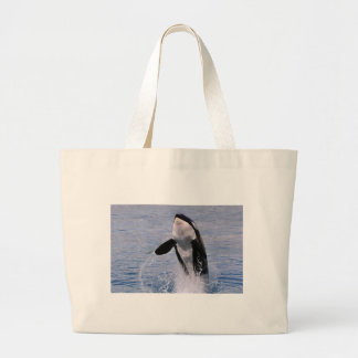 Killer whale jumping out of water bags