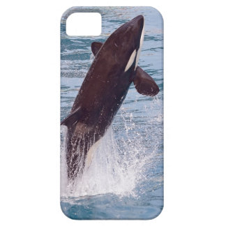 Killer whale jumping out of water iPhone SE/5/5s case