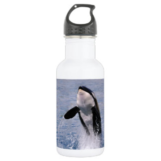 Killer whale jumping out of water water bottle