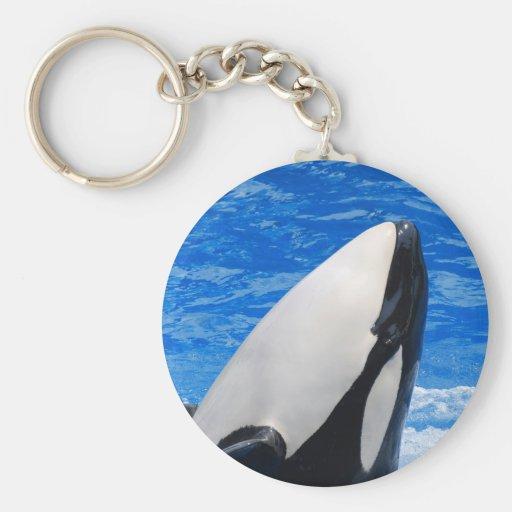 Killer Whale Keychain