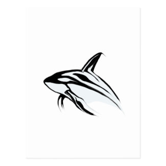 Killer Whale Leaping Collection Postcard