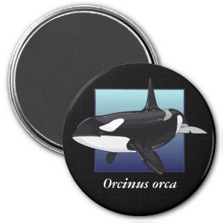 Killer Whale Magnet, Round 3 Inch Round Magnet