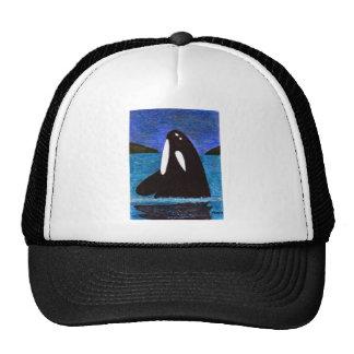 killer whale mesh hat