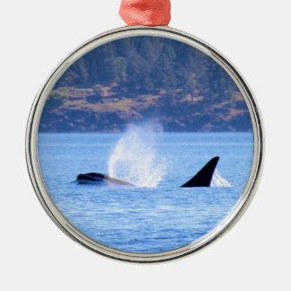 Killer Whale Metal Ornament