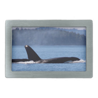 Killer Whale Mother and Son Belt Buckle