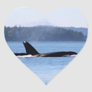 Killer Whale Mother and Son Heart Sticker