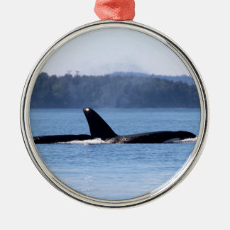 Killer Whale Mother and Son Metal Ornament