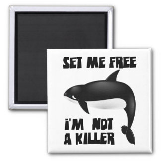 Killer Whale - Orca 2 Inch Square Magnet