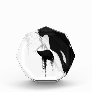 Killer Whale Orca by Crem Acrylic Award