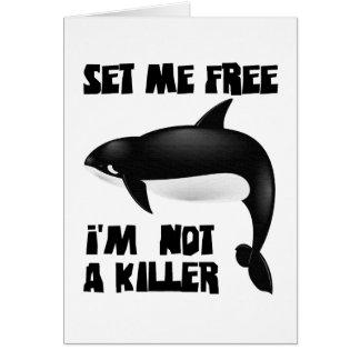 Killer Whale - Orca Card