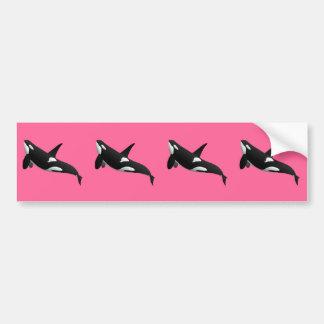 Killer Whale, Orcinus Orca Car Bumper Sticker