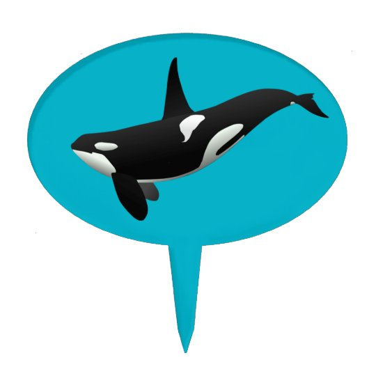 Killer Whale Orcinus Orca Cake Topper Zazzle Com